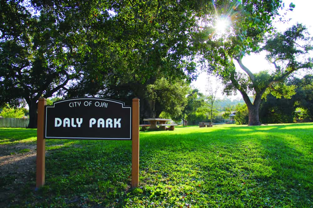 Daly-Park3