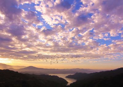 Sunrise over Ojai's Lake Casitas