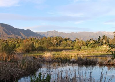Ojai Pond courtesy OVLC