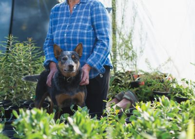 Jo O'Connell and Wallaby, Australian Native Nursery