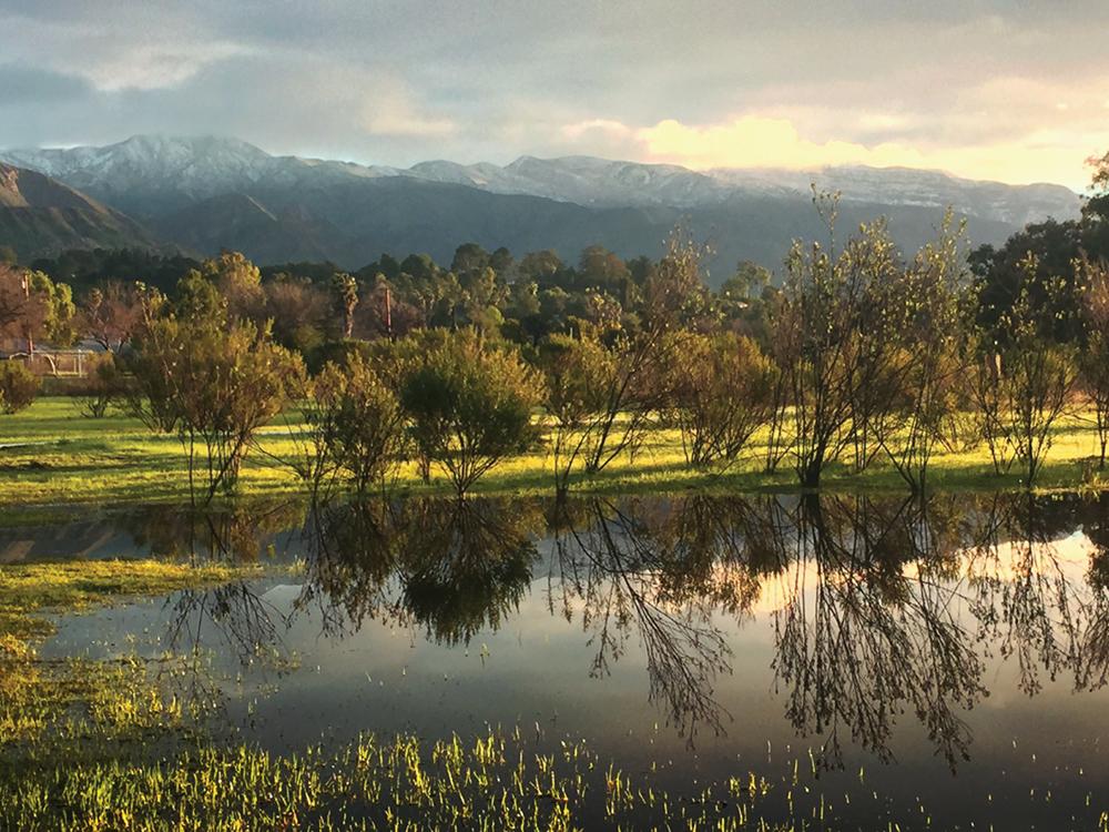 Ojai Meadows Preserve_sml